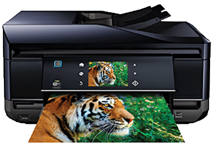 epson XP-800 setup driver support epsonconnect wireless